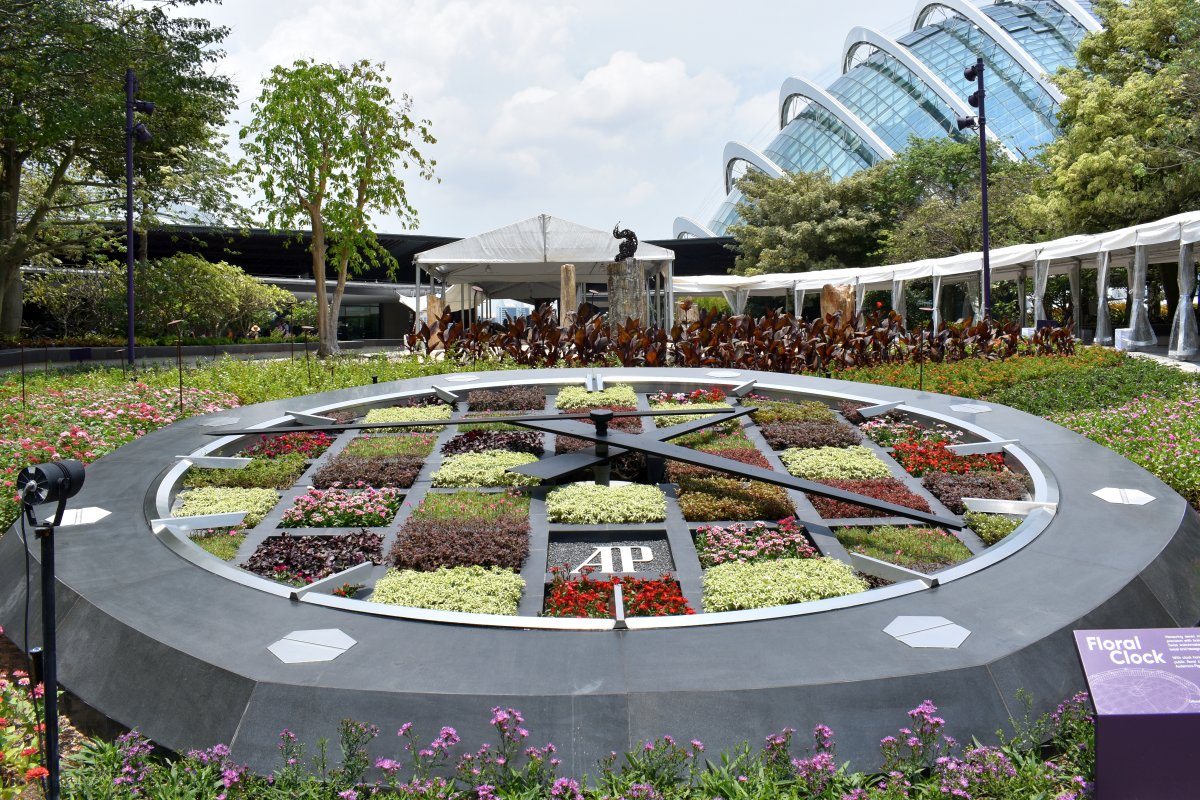 Flower clock - beautiful and accurate!