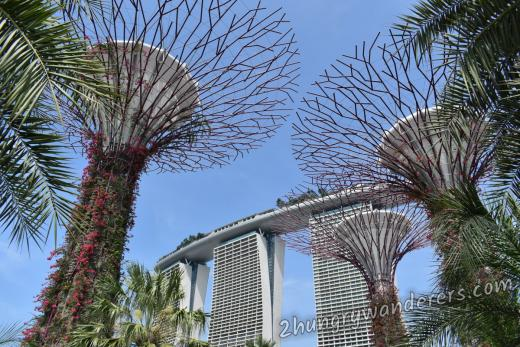 Gardens By The Bay - see them night and day